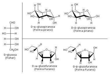 L Glucose Chair Beta L Glucose C